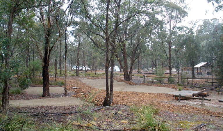 Bungonia Campground - Australia Accommodation