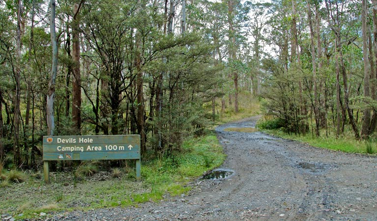 Devils Hole campground and picnic area - Australia Accommodation
