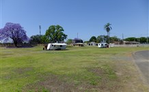 Grafton Showground Caravan Park - Australia Accommodation