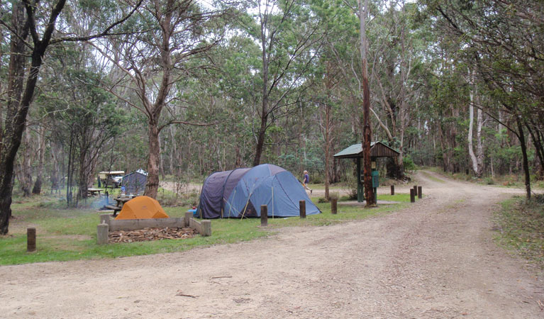 Native Dog campground - Australia Accommodation