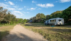 Racecourse Campground - Australia Accommodation