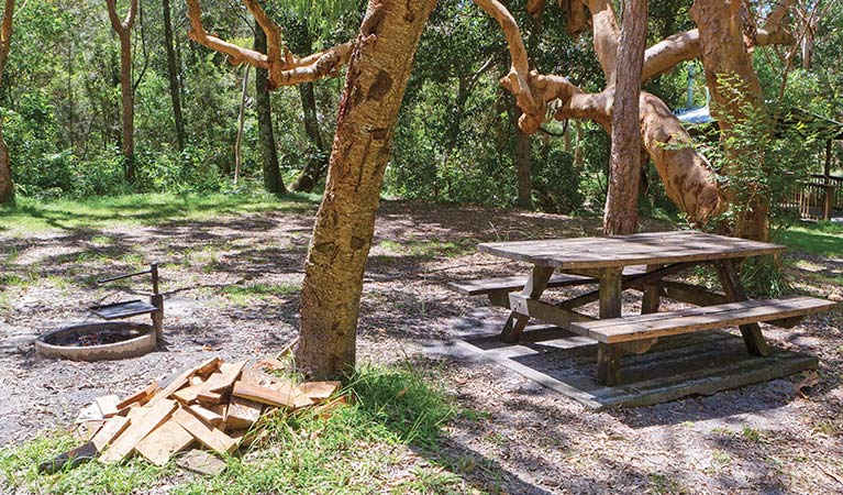 Station Creek campground - Australia Accommodation
