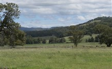 Ingleden Park Bed and Breakfast Farmstay Cottages - Australia Accommodation