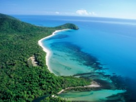 Cape Tribulation Camping - Australia Accommodation