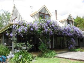 French Cottage and Loft - Australia Accommodation