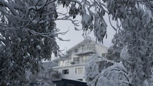Attunga Alpine Lodge and Apartments - Australia Accommodation