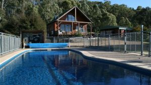 Karoonda Olive Grove Retreat at Mt Buffalo Olives - Australia Accommodation