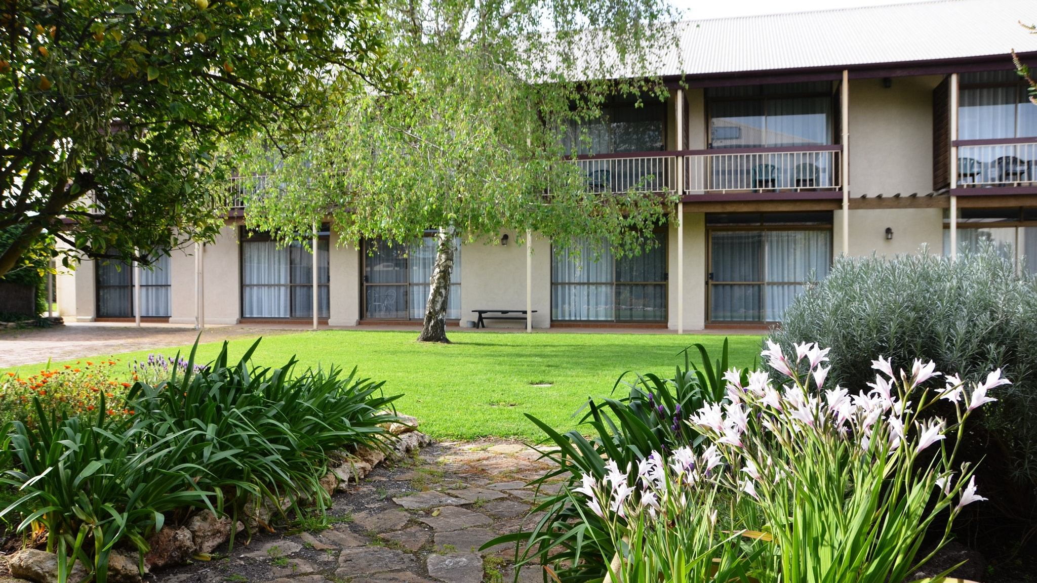 Coonawarra Motor Lodge - Australia Accommodation