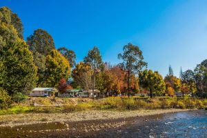 Porepunkah Bridge Holiday Park - Australia Accommodation