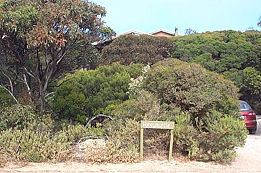 The Honeymyrtle Cottage - Australia Accommodation