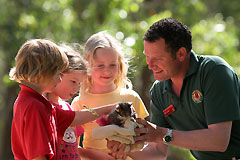 Cleland Wildlife Park - Australia Accommodation