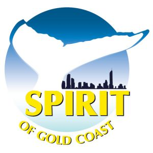 Spirit of Gold Coast Whale Watching - Australia Accommodation