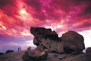 Kangaroo Island Adventure Tour 2 day/1 night - Australia Accommodation