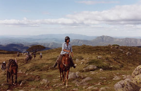 High Country Horses - Australia Accommodation