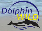 Dolphin Wild - Australia Accommodation