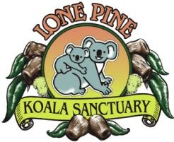 Lone Pine Koala Sanctuary - Australia Accommodation