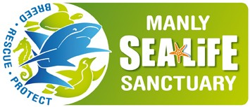 Manly SEA LIFE Sanctuary - Australia Accommodation