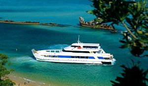 Queensland Day Tours - Australia Accommodation