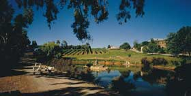 Mount Hurtle Winery home of Geoff Merrill Wines - Australia Accommodation