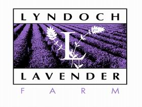 Lyndoch Lavender Farm and Cafe - Australia Accommodation