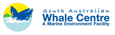 South Australian Whale Centre - Australia Accommodation