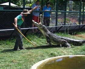 Snakes Downunder Reptile Park and Zoo - Australia Accommodation