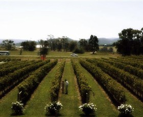 Rochford Wines - Australia Accommodation