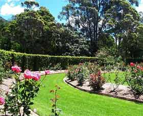 Wollongong Botanic Garden - Australia Accommodation