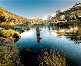 Fly Fishing Tumut - Australia Accommodation