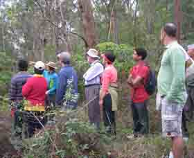 Boronia Tours - Australia Accommodation