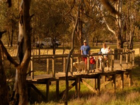 Loxton's Drives Walks and Trails - Australia Accommodation