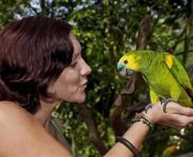 Birdworld Kuranda - Australia Accommodation