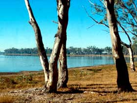 Lake Broadwater Conservation Park - Australia Accommodation