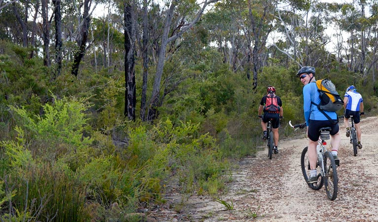 McMahon's Point ride - Wentworth Falls - Australia Accommodation