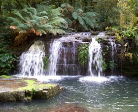 Barrington Tops National Park Walks - Australia Accommodation