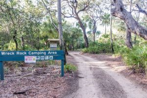 Deepwater National Park Camping Ground - Australia Accommodation