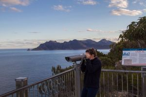 4x4 and Lunch Half Day Freycinet National Park - Australia Accommodation