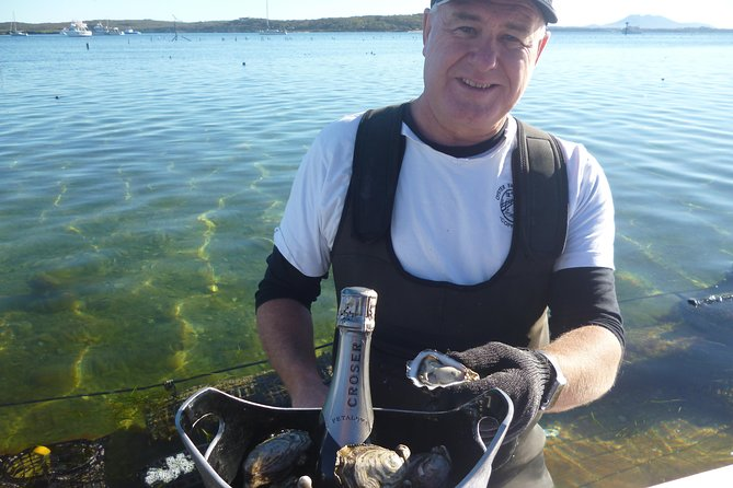 Coffin Bay Oyster Farm  Tasting Tour - Australia Accommodation