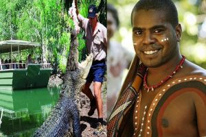Hartley's Crocodile Adventures and Tjapukai Cultural Park Day Trip from Cairns - Australia Accommodation
