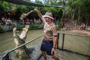 Hartley's Crocodile Adventures Day Trip from Cairns - Australia Accommodation