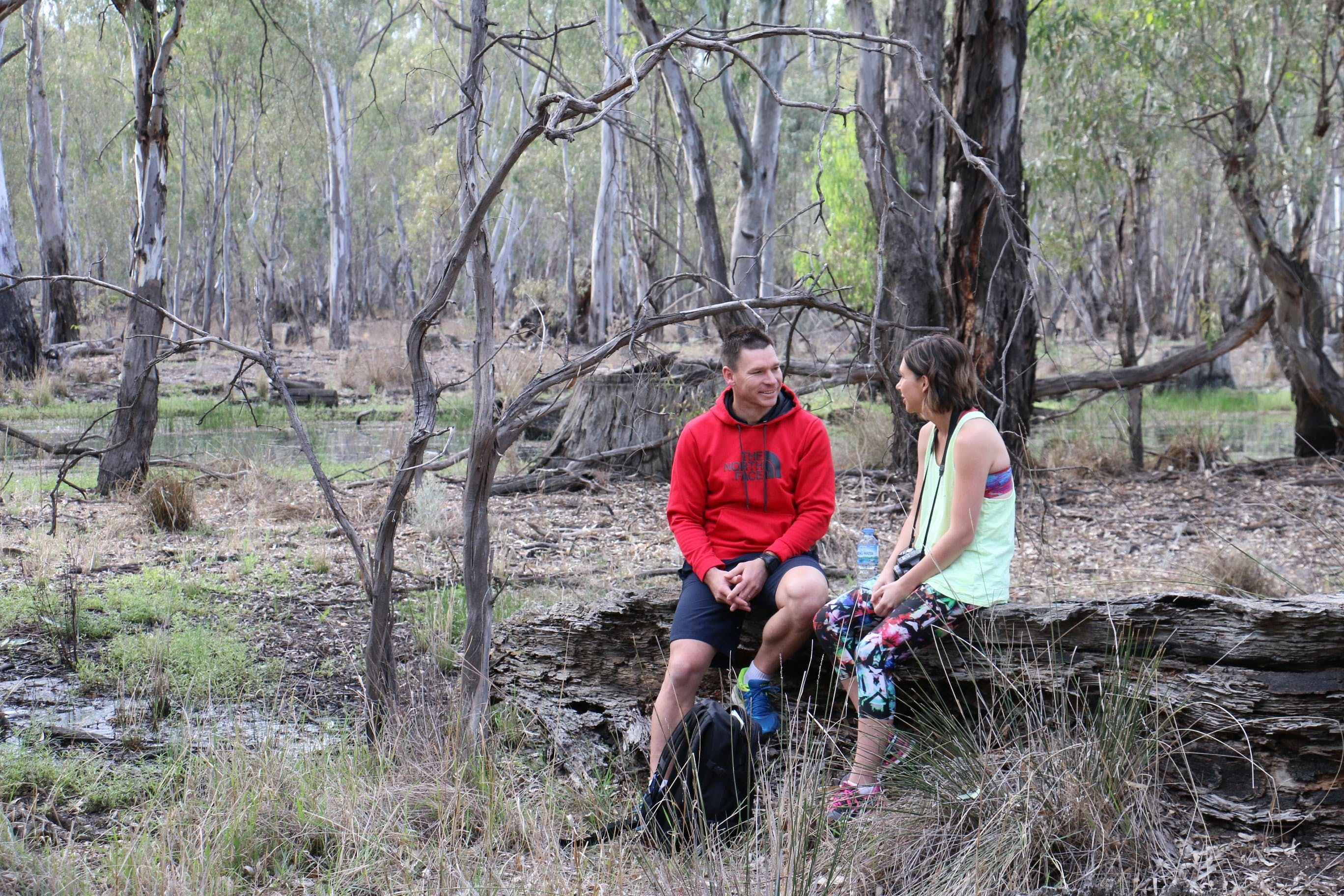 Gunbower Island Forest Drive - Australia Accommodation