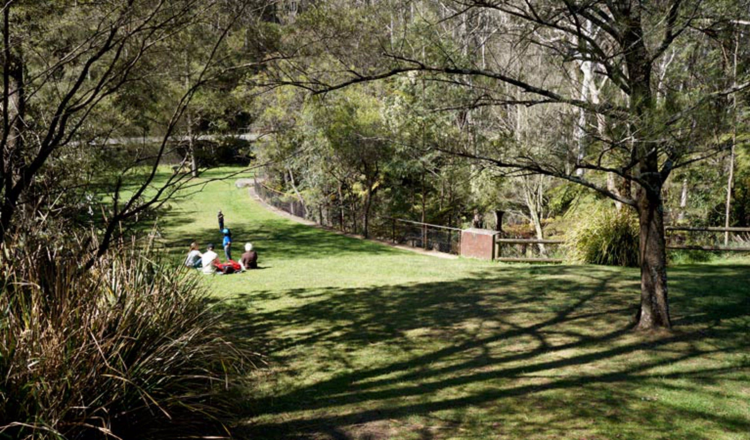 Leura Cascades picnic area - Australia Accommodation