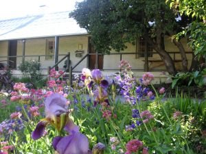Raglan Gallery And Cultural Centre - Australia Accommodation