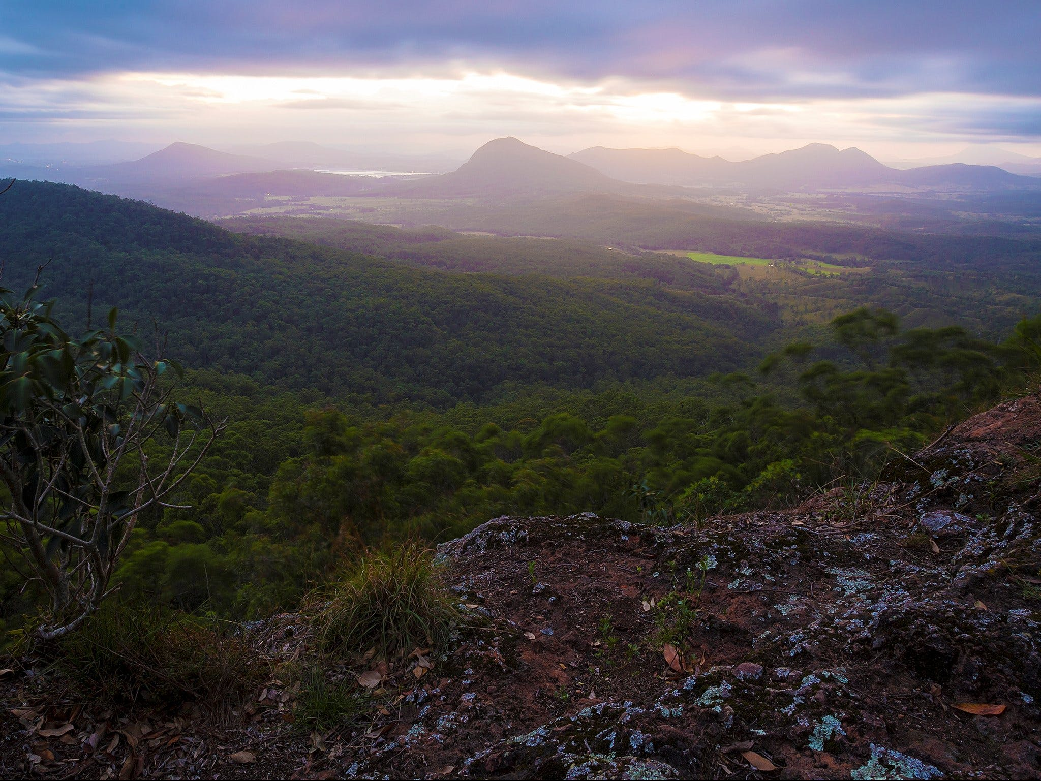 Cunninghams Gap and Spicers Gap Main Range National Park - Australia Accommodation