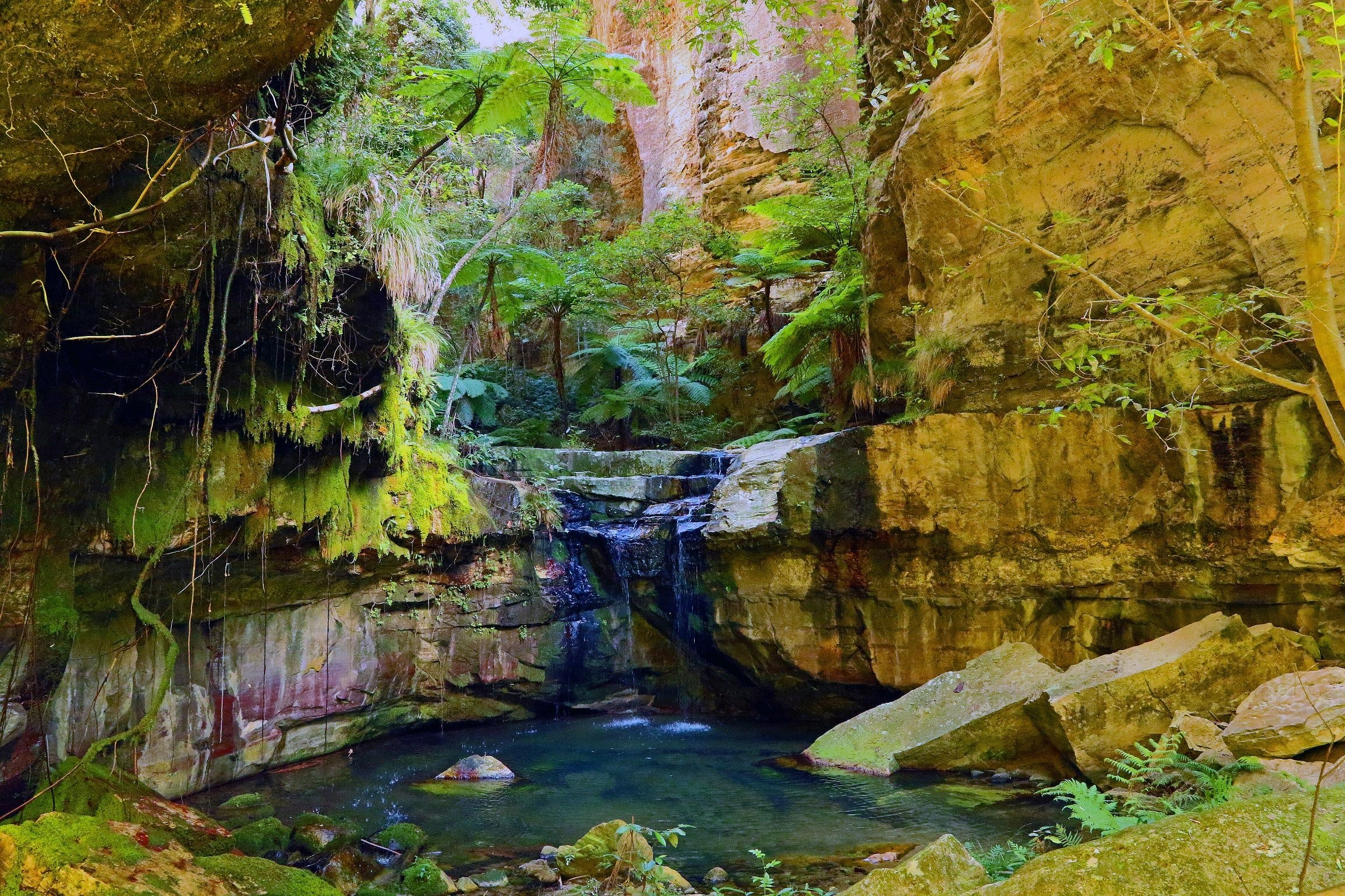 Glimpse of the Outback 5 Day Tour - Roma and Surrounds - Australia Accommodation