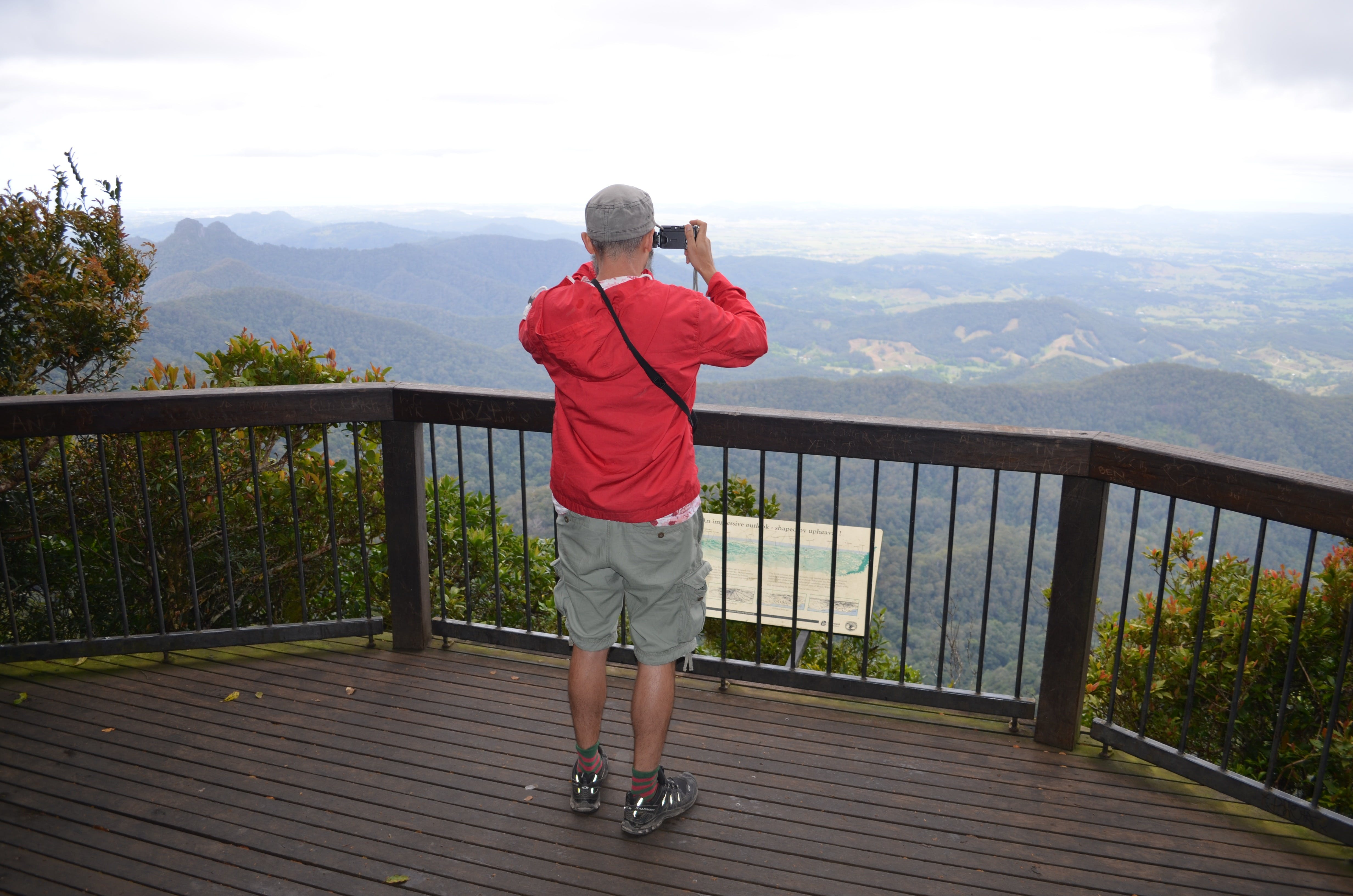 Best of All lookout track Springbrook National Park - Australia Accommodation