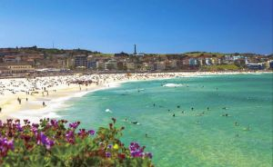 Bondi - Australia Accommodation