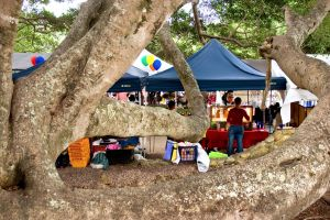 Eumundi - Australia Accommodation