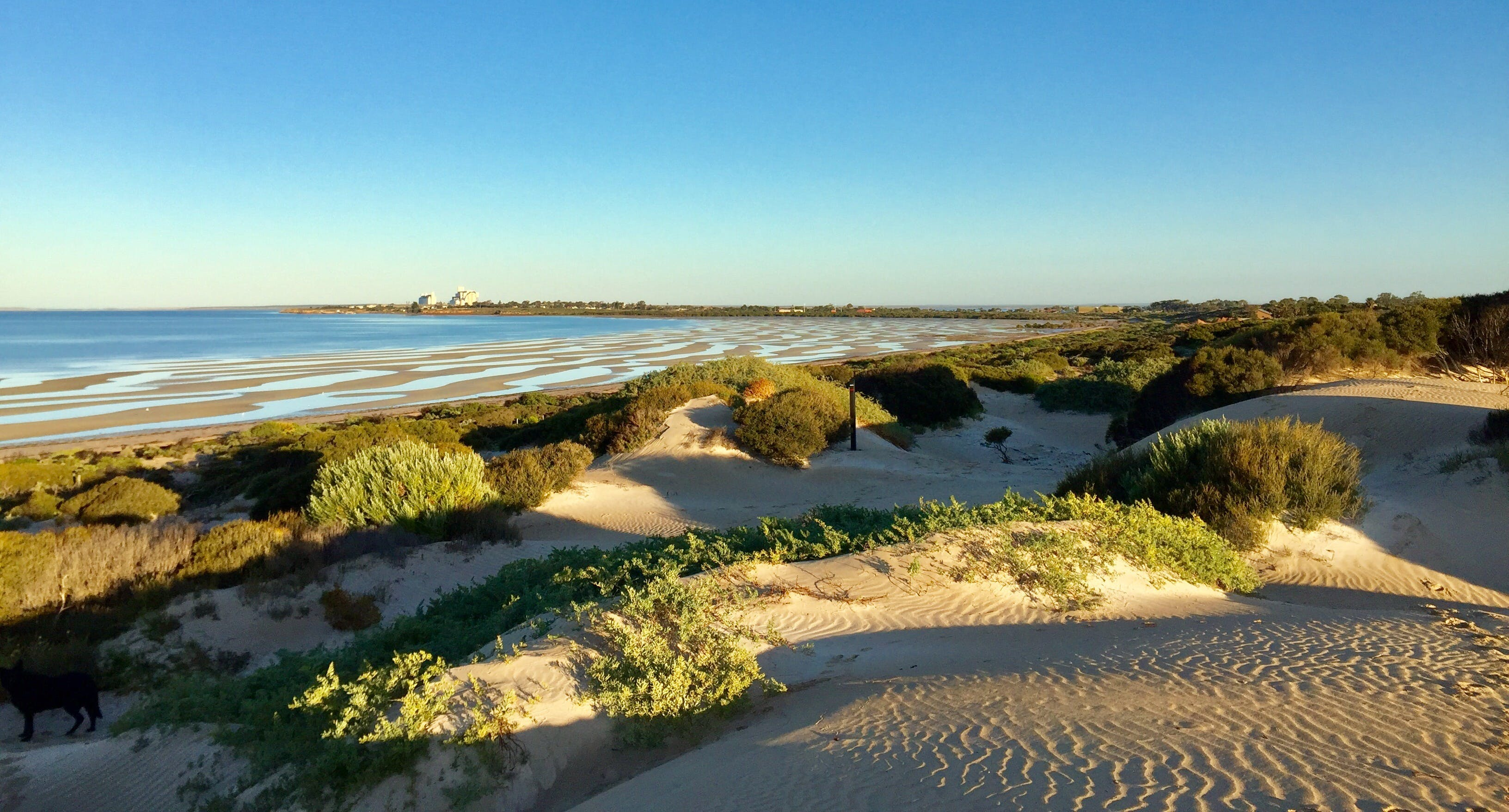 Shelly Beach Dune Walk Trail - Australia Accommodation