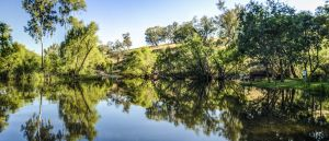 Tumut River Walk - Australia Accommodation